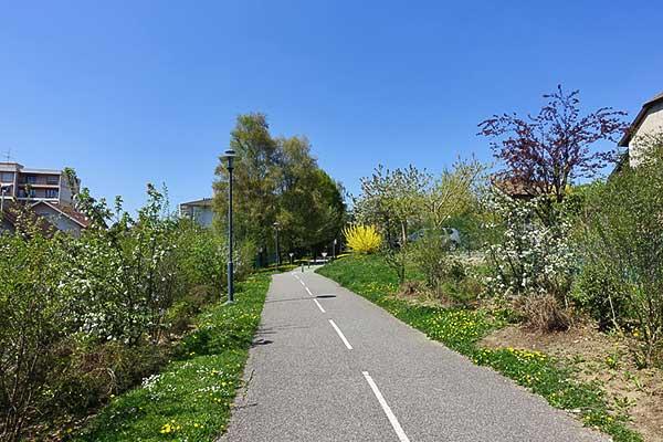 Épül a kerékpárút a magyar-szlovén határon